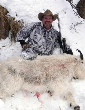 Milligan's Outfitting – Mountain Goat, Alaska Moose, Grizzly Brown Black Bear Hunting Outfitters in British Columbia, Canada