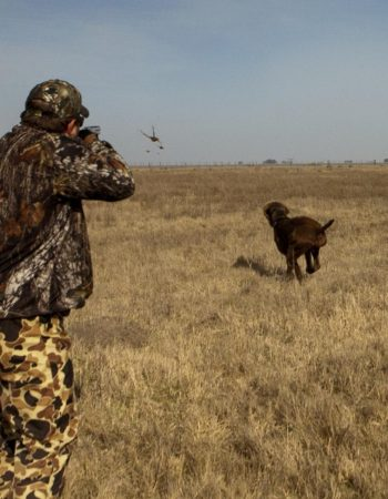 Los Crestones Lodge – High-Volume Bird Shoots and Big Game Trophy Hunts in Argentina